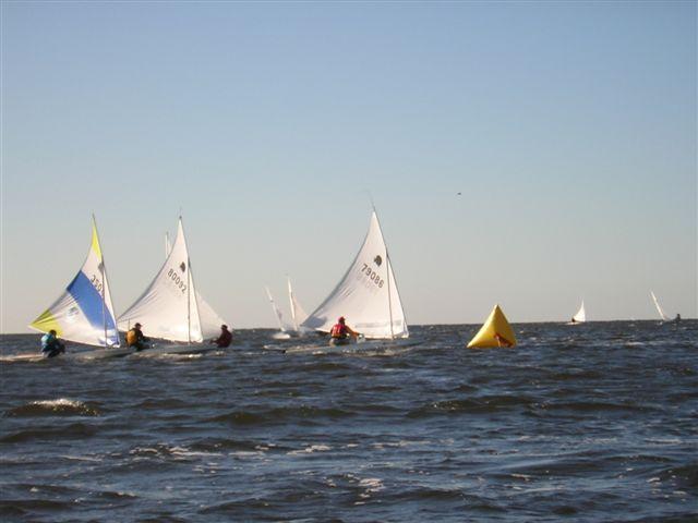 regatta6